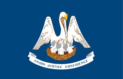 State Flag Louisiana
